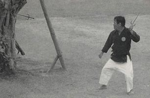 Matayoshi Shinpo throwing sai