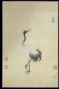 Ming_herbal_(painting);_Siberian_white_crane_Wellcome_L0039440