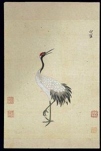 Ming_herbal_(painting);_Siberian_white_crane_Wellcome_L0039440